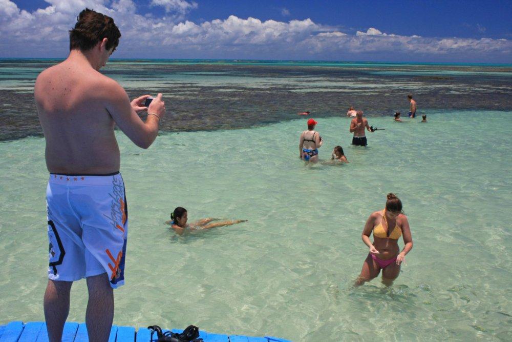 Favoritos ICMBio - Área de Proteção Ambienta Costa dos Corais - Guia do  QZ75