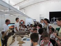 img stand mostra ambiental2015 4