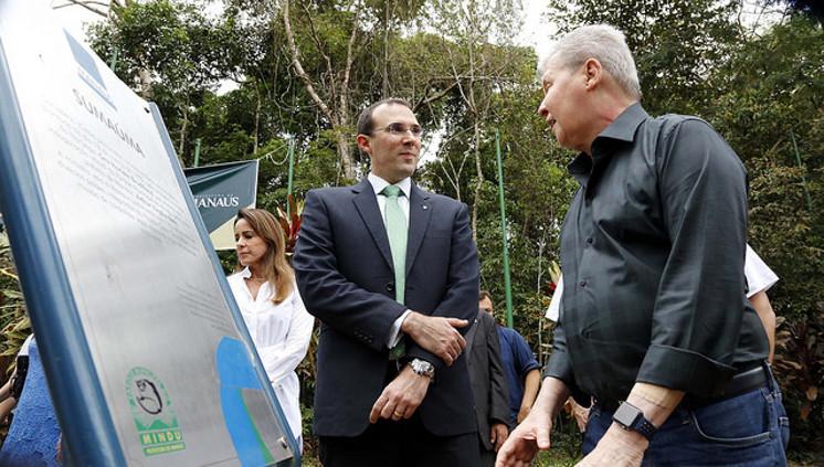 Manaus ganha Área de Proteção Ambiental para o sauim-de coleira