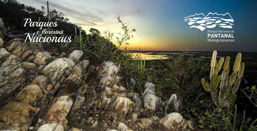 Parque Nacional do Pantanal é uma sugestão de destino para viagem nacional. Créditos: ICMBio